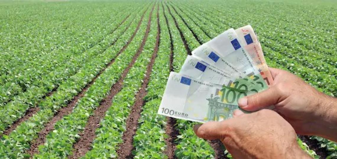 50 milioni di euro per sostenere i settori dell'agricoltura, della silvicoltura e della pesca nell'emergenza Covid-19