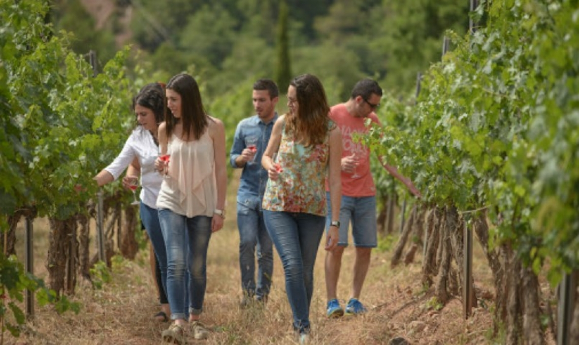 Il turismo del vino è stato ucciso dal covid-19