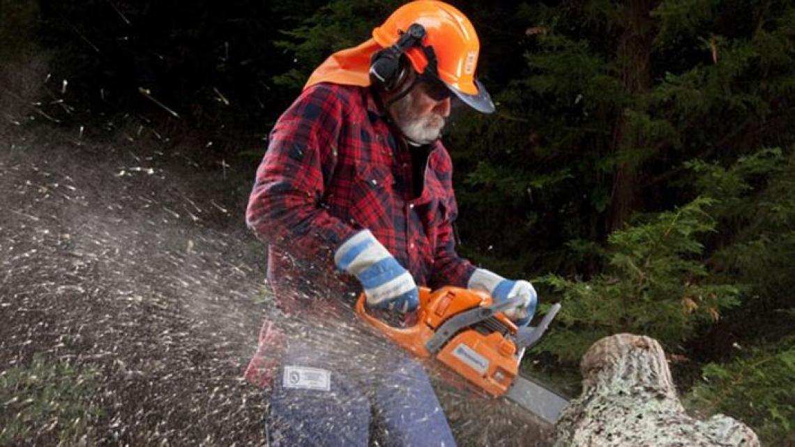 Criteri minimi per la formazione professionale degli operatori forestali