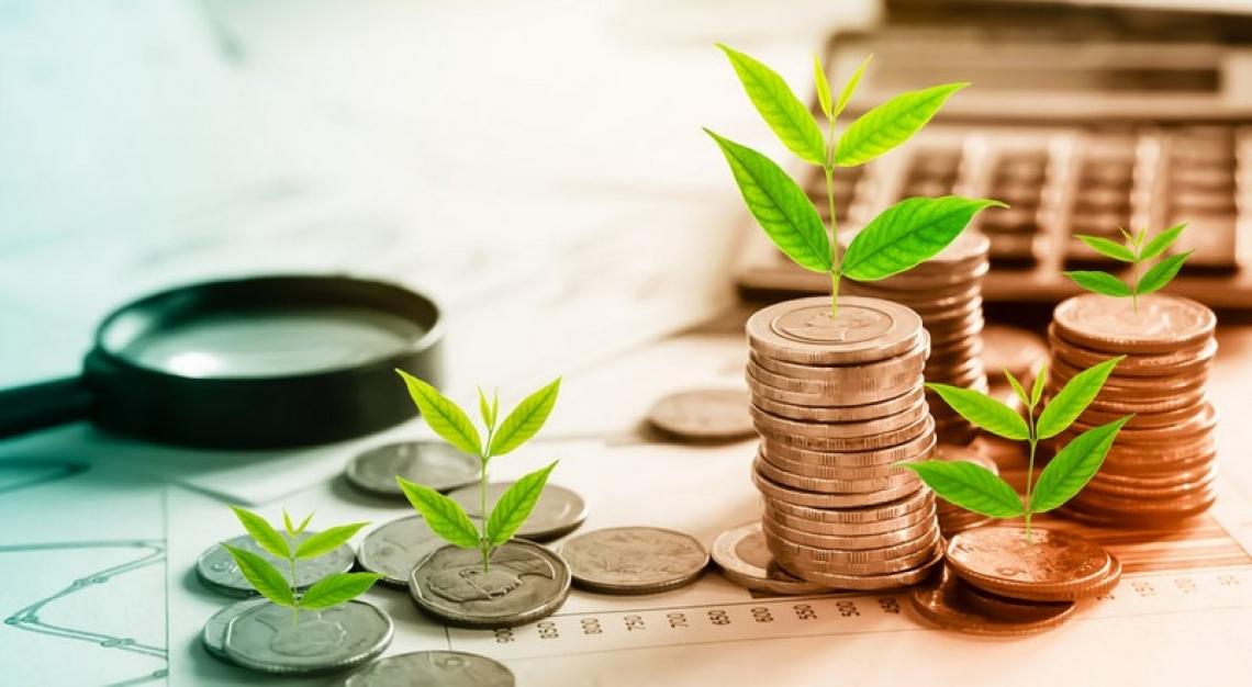 Distribuiti da Agea 249 milioni di euro di aiuti della politica agricola comunitaria