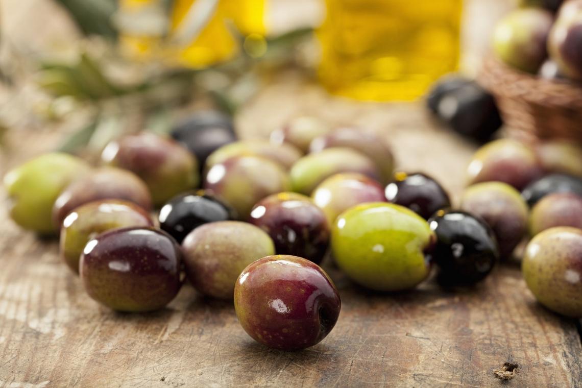 Come aumentare la concentrazione fenolica di un olio extra vergine di oliva con la fertilizzazione fogliare