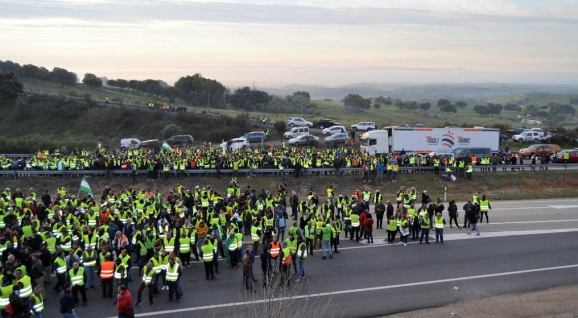 A maggio gli olivicoltori spagnoli di nuovo in piazza