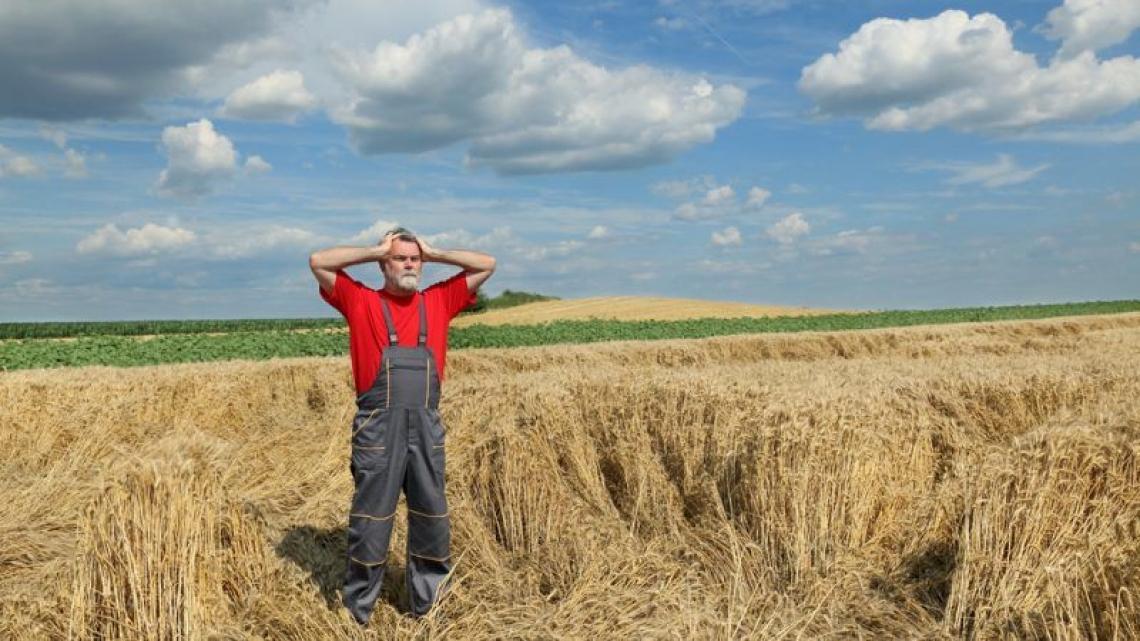 Ora la Francia detta la linea: stop all'agroalimentare nei trattati di libero scambio