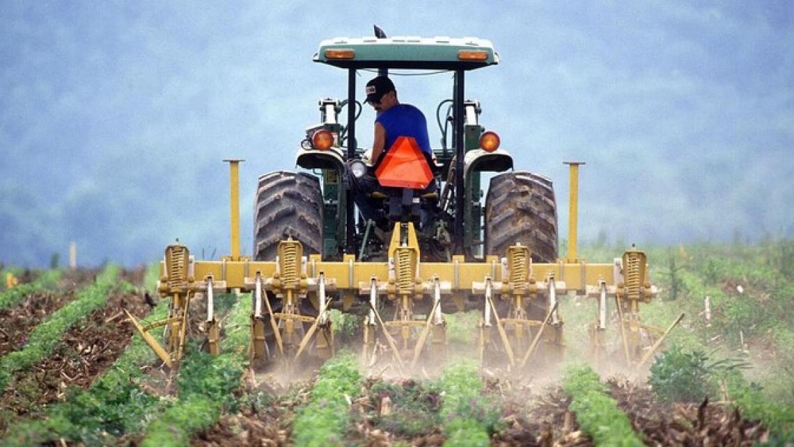 Servono più coraggio e soldi dall'Unione europea per risollevare l'agricoltura