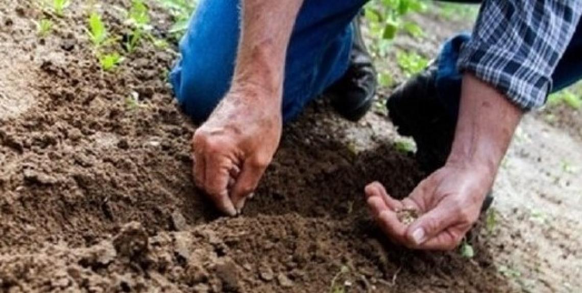 Boom di richieste per la cambiale agraria che superano i 30 milioni di euro