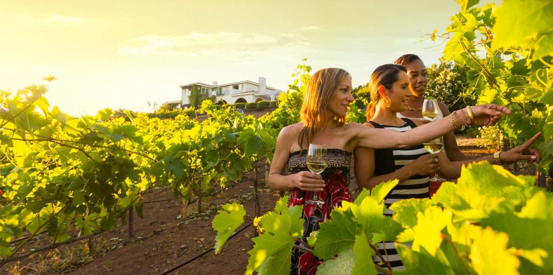 Movimento Turismo del Vino e Unione Italiana Vini lanciano la Carta dell'Enoturismo