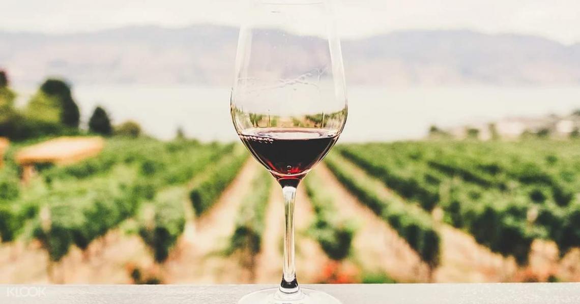 Il comparto vitivinicolo mondiale deve diventare più sostenibile per salvarsi