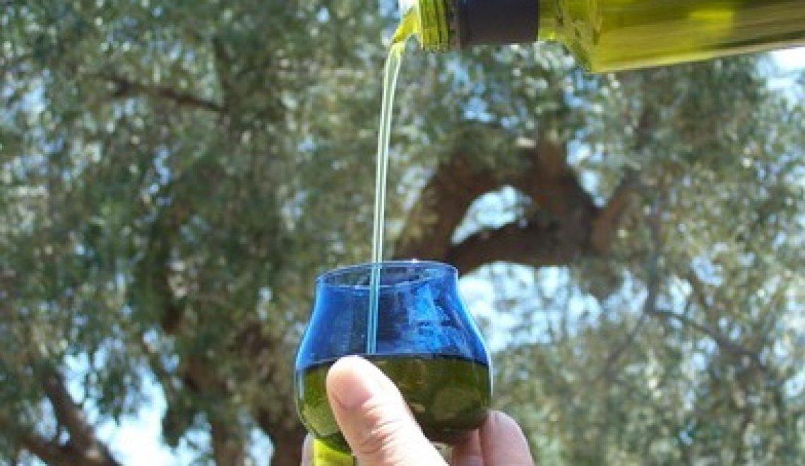 Il vero valore dell'iscrizione all'albo degli assaggiatori professionali di olio d'oliva vergine