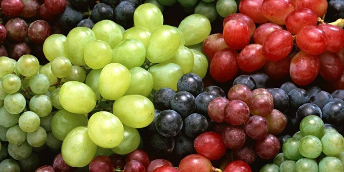 Maxi sequestro di uva da tavola egiziana a Ravenna