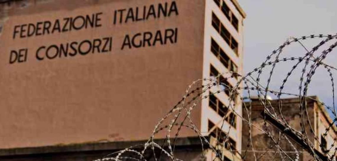 Quattro Consorzi agrari e Bonifiche Ferraresi danno vita a Consorzi agrari d'Italia