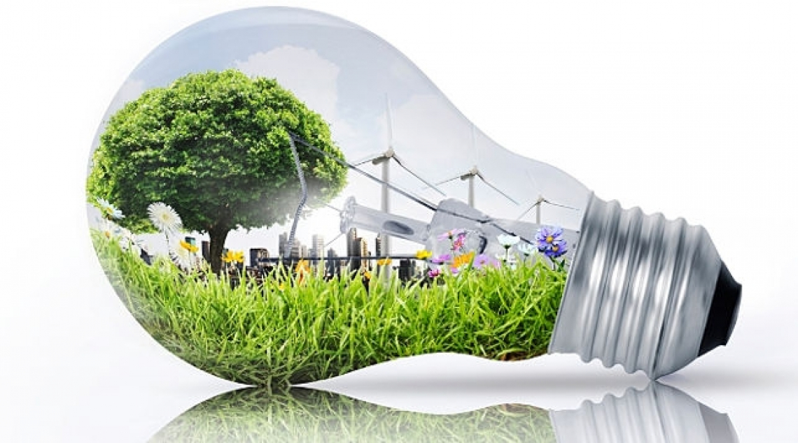 Ogni euro investito nella Green Economy ne restituisce 2,3