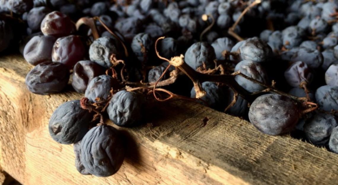 L'influenza di diverse tipologie di disidratazione dell'uva sulla qualità del vino