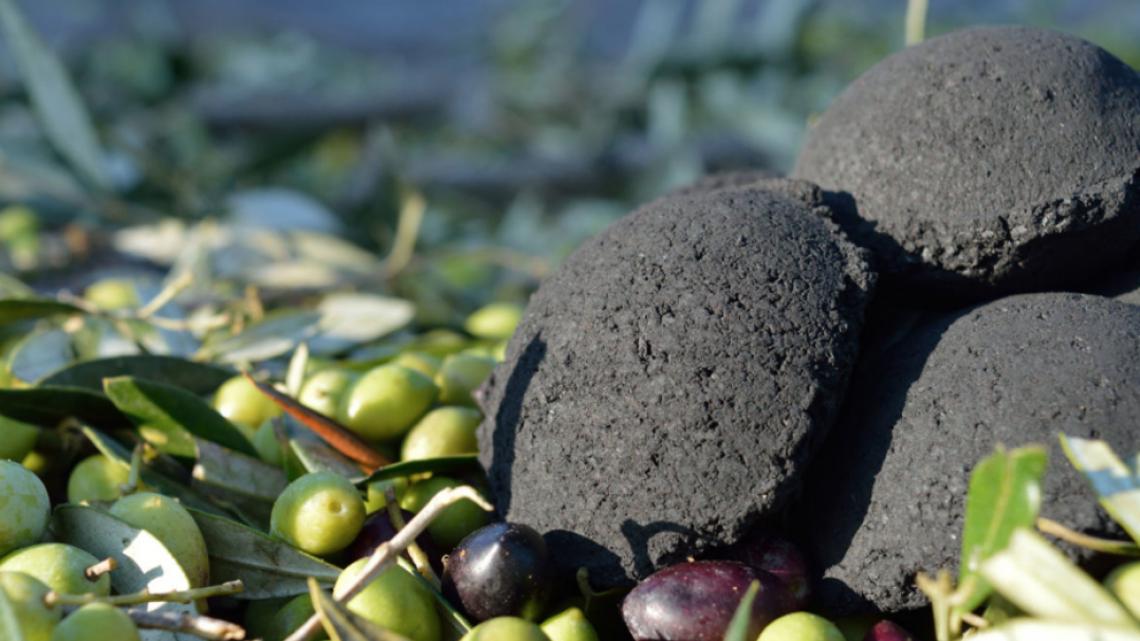 Il carbone di nocciolo d'olivo è perfetto per il barbecue ed è pure ecocompatibile