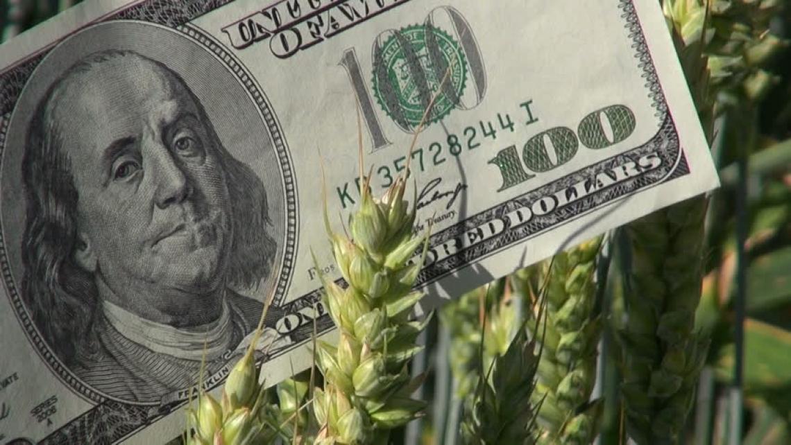 Per l'agricoltura statunitense previsti 14 miliardi di aiuti post Covid-19