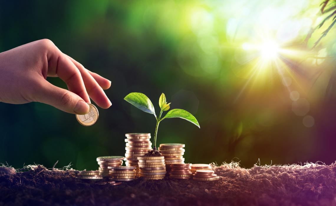 Post Covid 400 milioni di euro di crediti erogati agli agricoltori