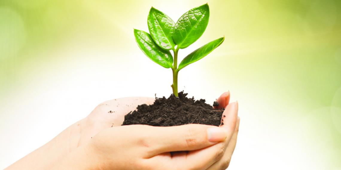 Non abusiamo della parola sostenibilità o la banalizziamo