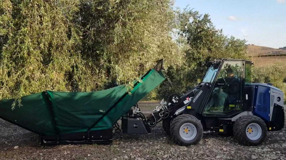 Le giuste frequenze e ampiezza di vibrazione per ottenere la massima efficienza di raccolta delle olive