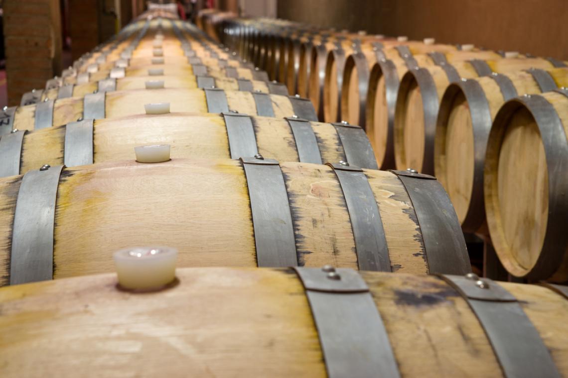 L'influenza di diversi tipi di affinamento con legno di quercia sul vino bianco