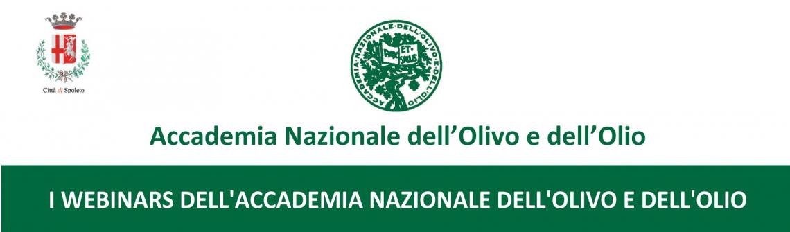 Un ricco programma di webinar autunnali per l'Accademia Nazionale dell'Olivo e dell'Olio