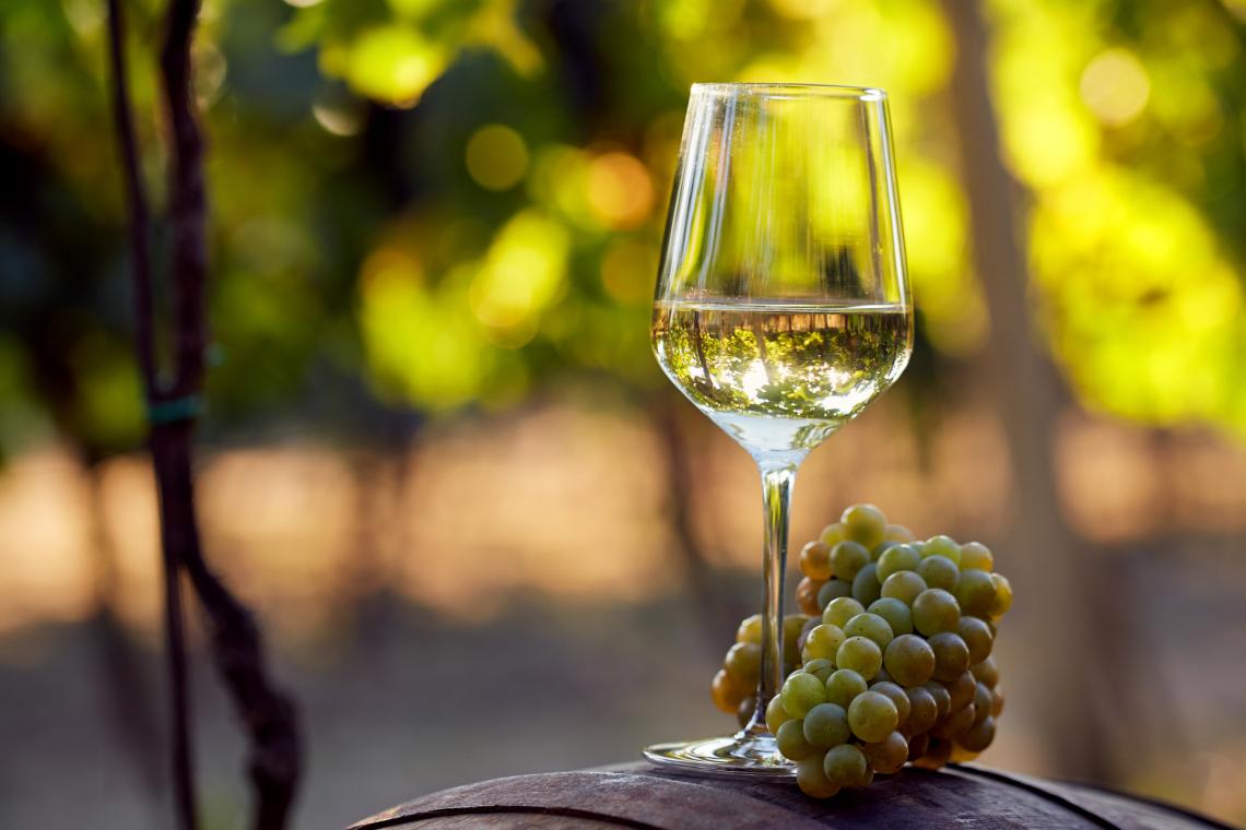 Non solo  Sauvignon Blanc, l'importanza dei tioli sul flavour dello Chardonnay
