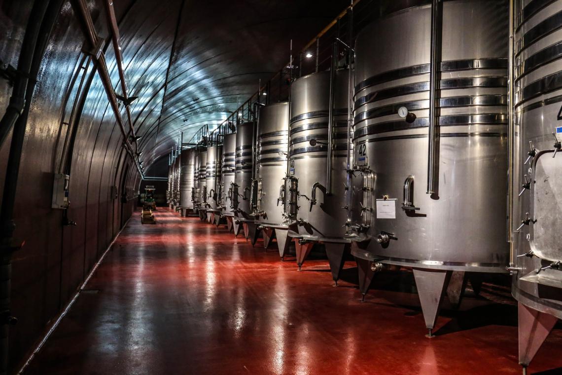 Per il secondo anno consecutivo la  produzione mondiale di vino sarà al di sotto della media