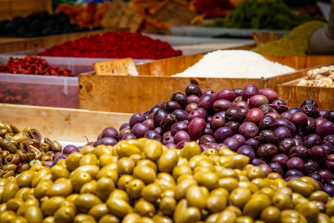 L'olivo è entrato nelle Americhe dalla porta del Messico