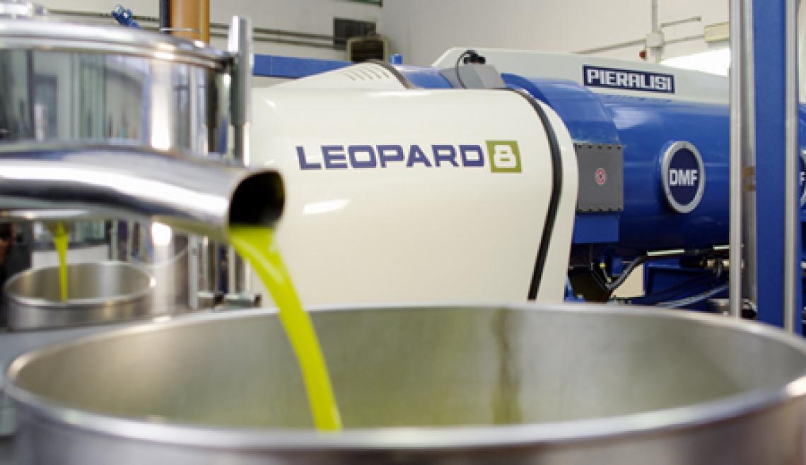 Passione, tenacia, competenza e conoscenza sono il segreto del successo nel mondo dell'olio d'oliva