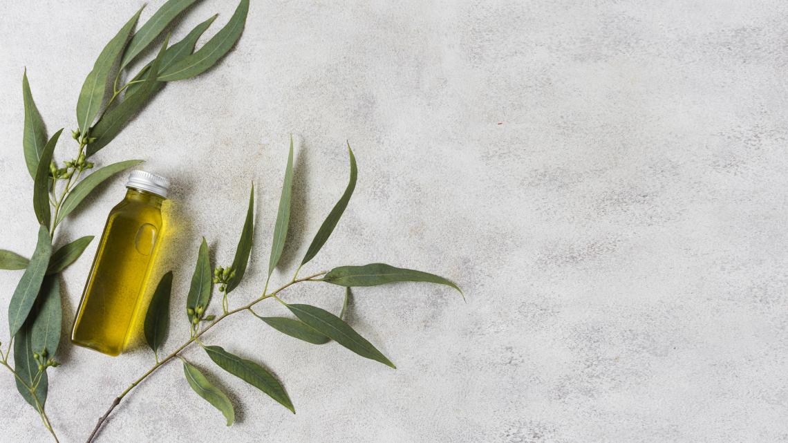 Migliorare la qualità dell'olio extra vergine di oliva da olive mature con la denocciolatura parziale