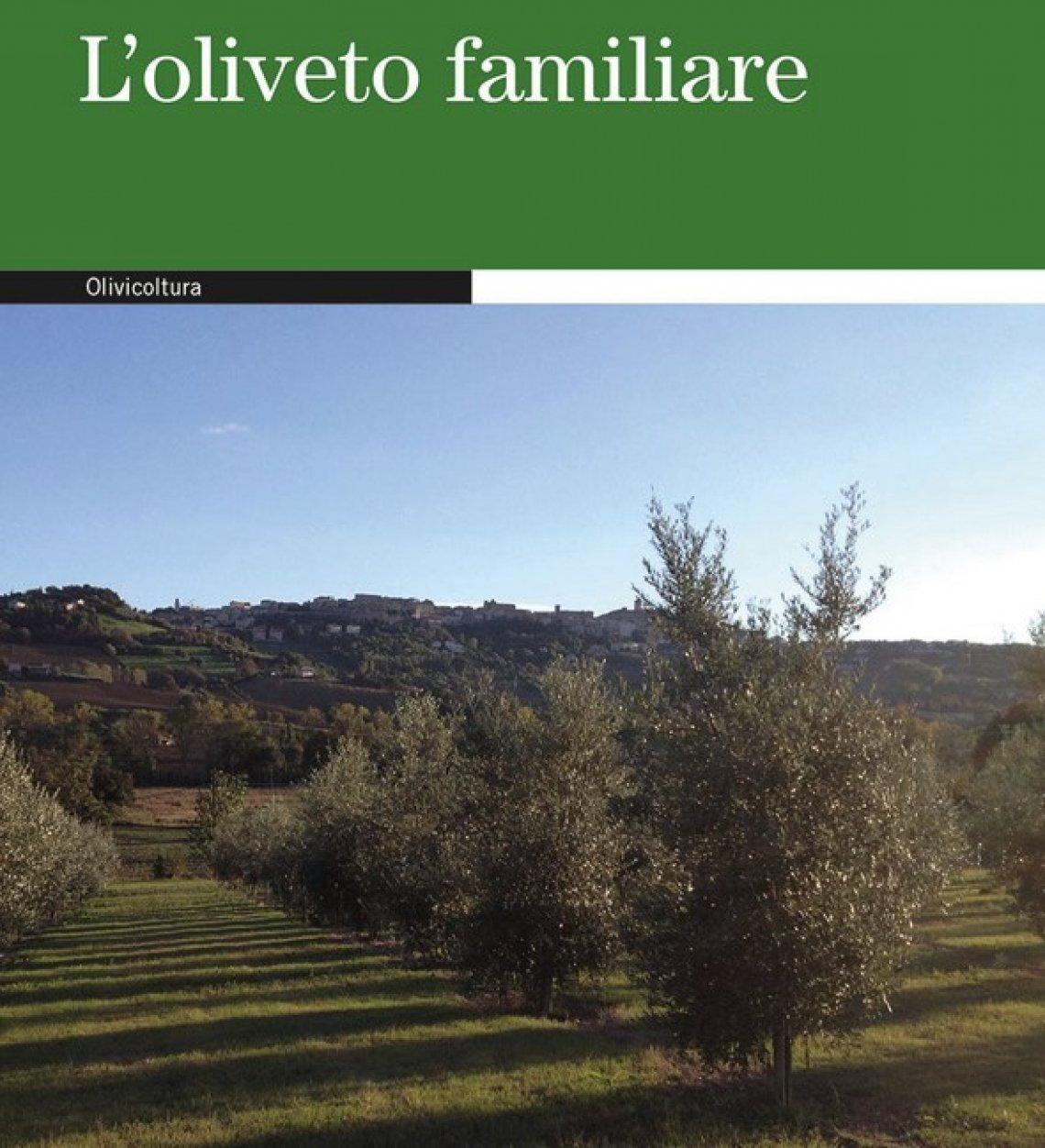 I segreti per un oliveto familiare perfetto