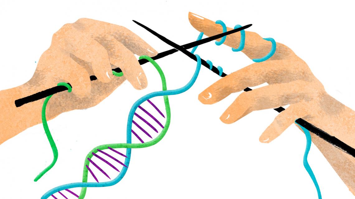 Le tecniche di editing del genoma delle piante sono sicure quanto gli Ogm