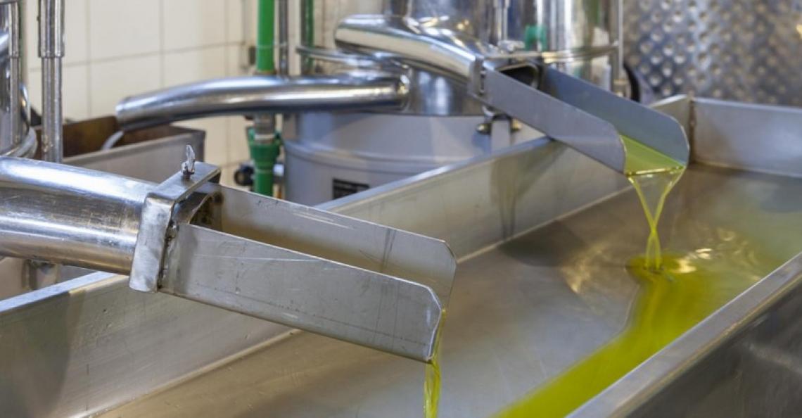 La verità sulla produzione di olio d'oliva in Spagna