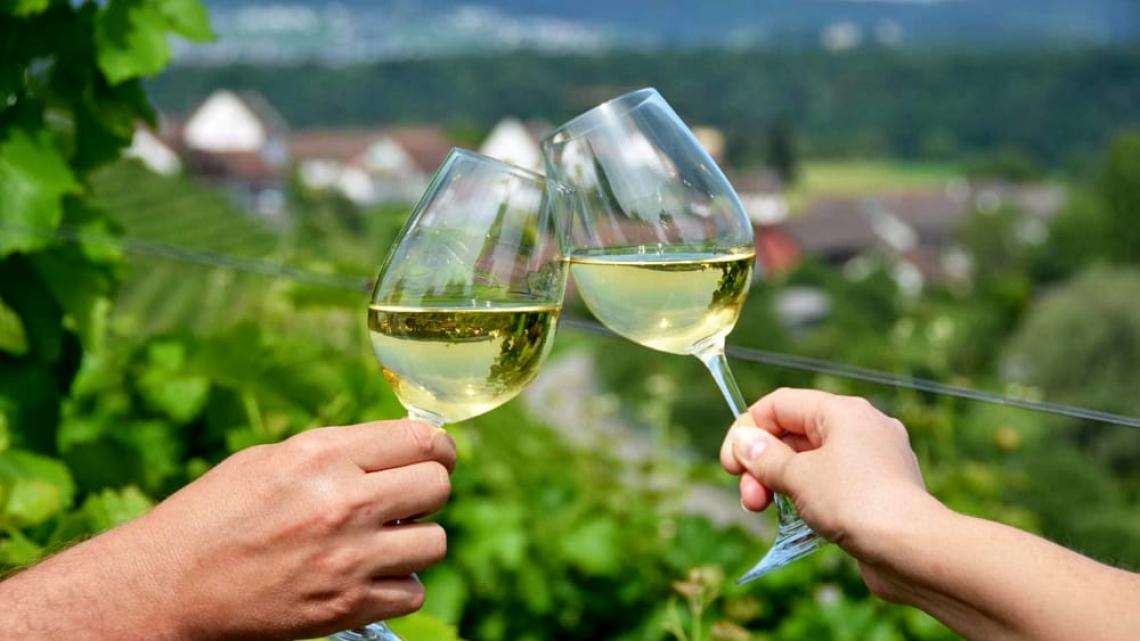 Il vino marchigiano punta su Canasa, Usa e Asia con 3 milioni di euro