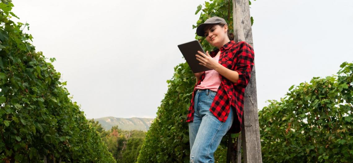 Il marketing: il futuro dell'agricoltura non si gioca solo in campo