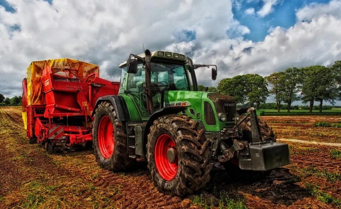 Italia leader in Europa per valore aggiunto agricolo