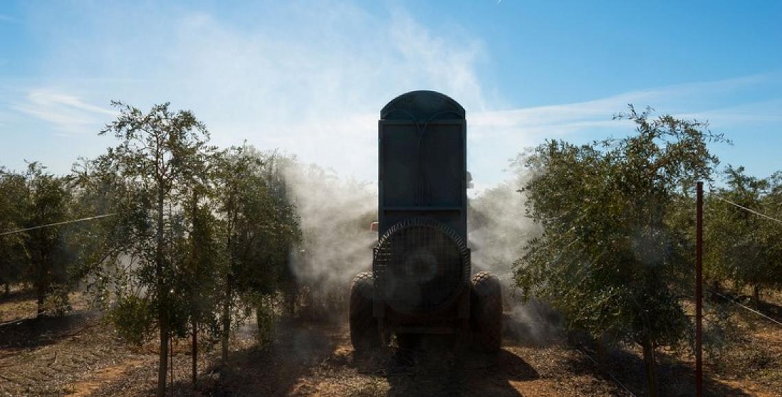Aggiornamenti per i patentini fitosanitari anche in tempi di pandemia