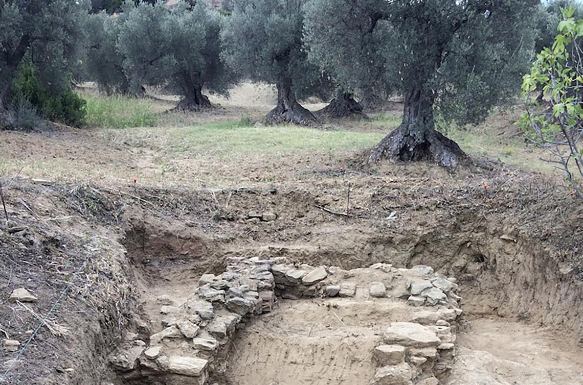 Scoperto in Basilicata un frantoio oleario del IV secolo a.C.