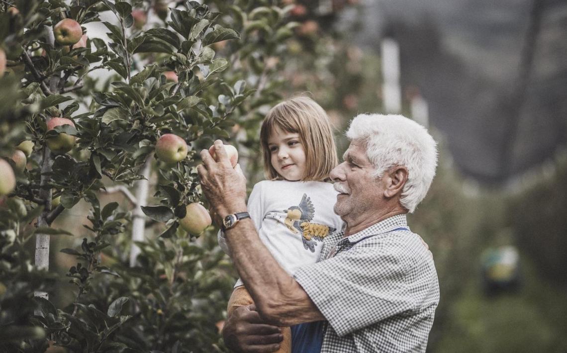 Le mele non sono tutte uguali: bontà e sostenibilità in Alto Adige