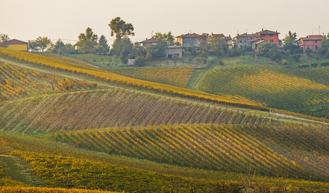 Oltrepò pavese, un territorio da fotografare con un bicchiere di vino in mano