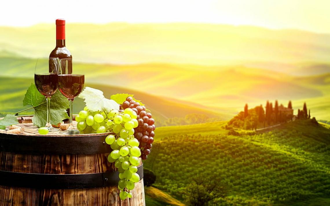 L'analisi del DNA entra nelle grandi cooperative vitivinicole nazionali