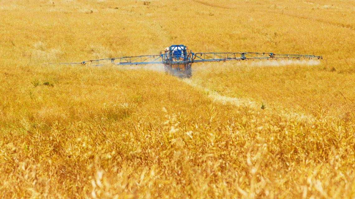 Fantasmi dell'uso passato di fitofamraci possono perseguitare le aziende agricole biologiche per decenni