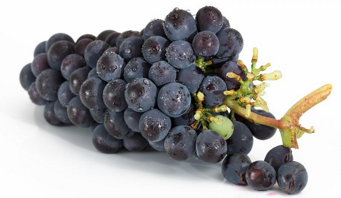 Pubblicato l'atlante delle parentele dei vitigni italiani: la viticoltura italiana senza segreti