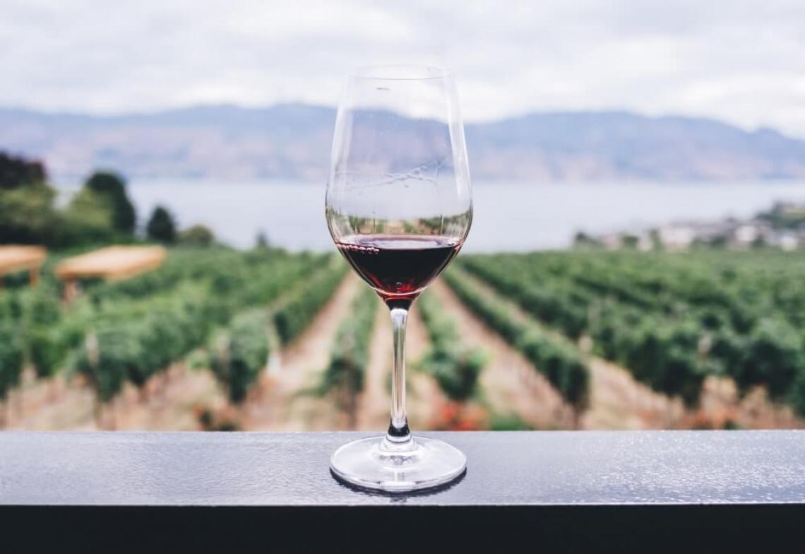 Possibile predire i sentori del vino prima della vinificazione