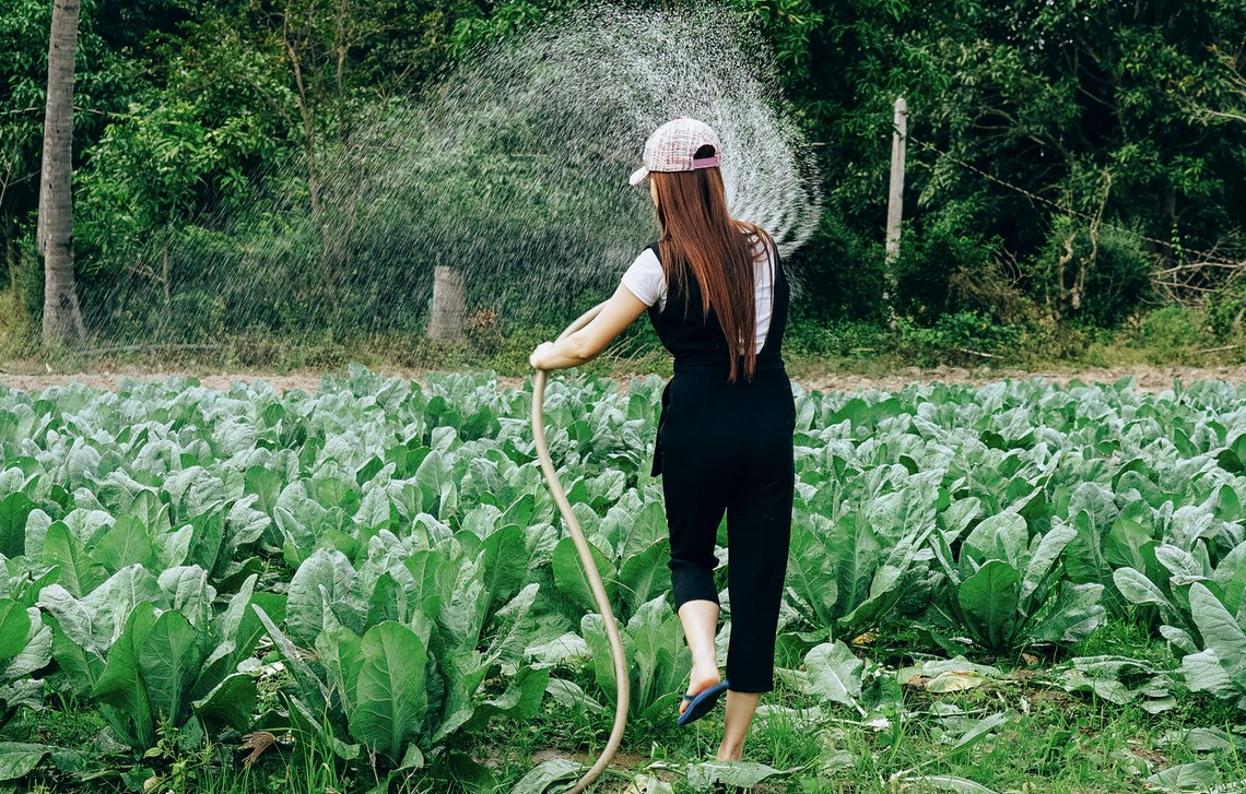 Grazie all'innovazione risparmiati 55 miliardi di metri cubi d'acqua negli ultimi 15 anni