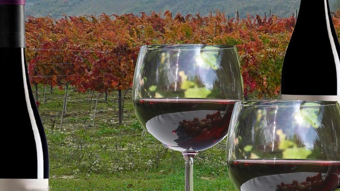 Il vino base aumenta le vendite anche in epoca Covid
