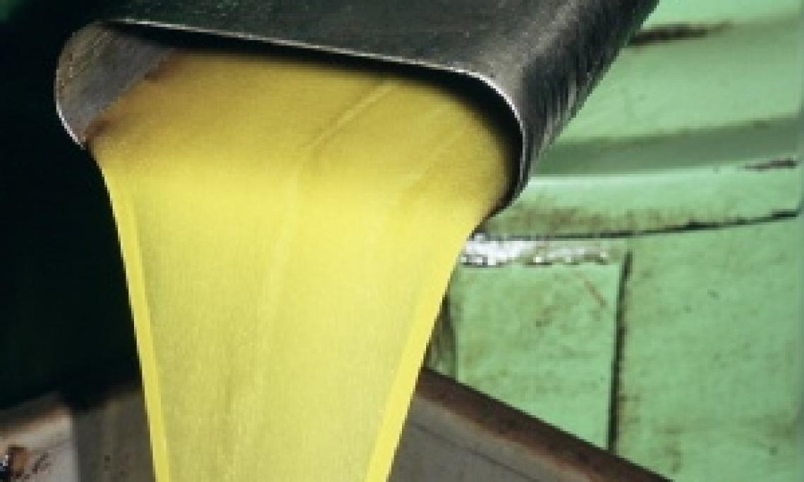Si conferma l'annata di scarica per l'olio d'oliva portoghese