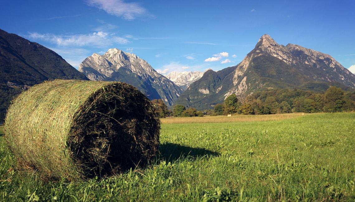 L'agricoltura in montagna ha bisogno di trattori dedicati