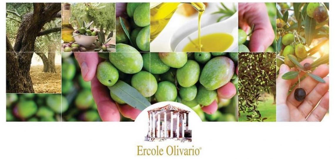Dal 19 aprile verranno svelati gli oli finalisti dell'Ercole Olivario