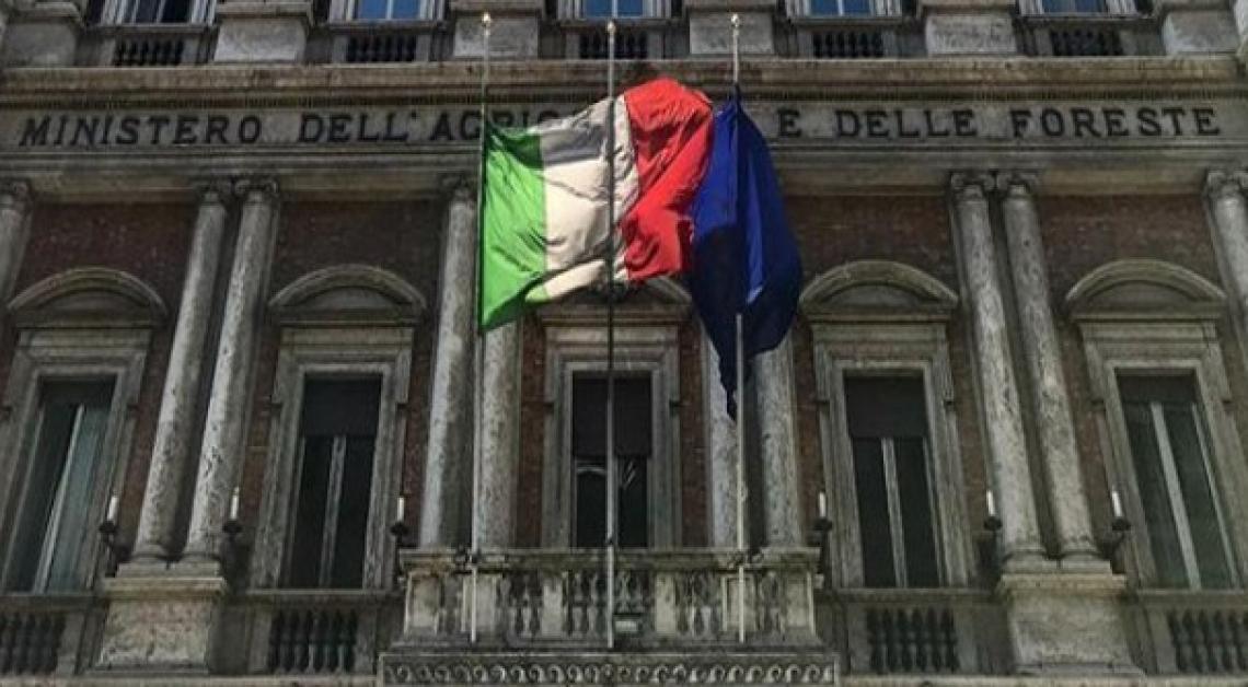 Assegnate le deleghe ai sottosegretari Francesco Battistoni e Gianmarco Centinaio