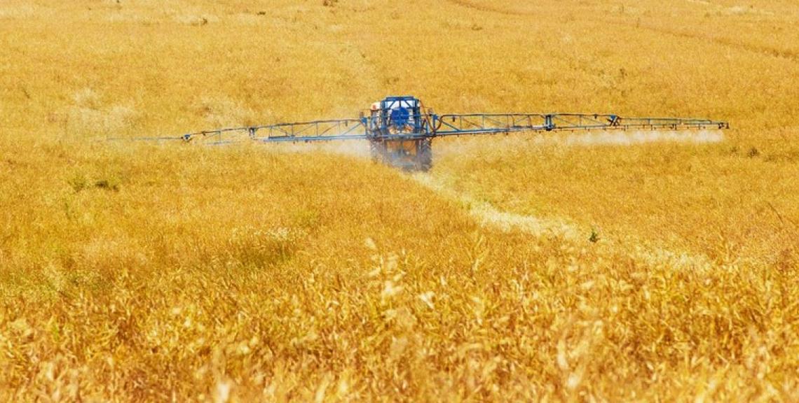 Pesticidi negli alimenti: Italia leader in Europa per controlli