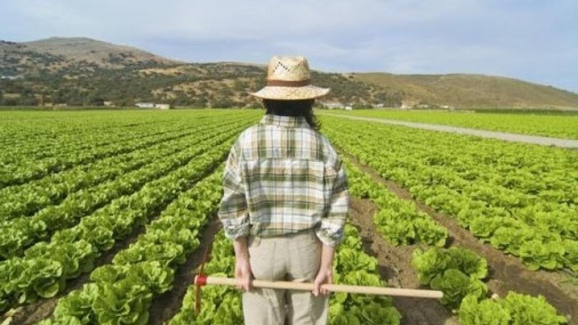 Esonero contributo previdenziale dal 1 gennaio al 30 giugno 2020 per le aziende agricole